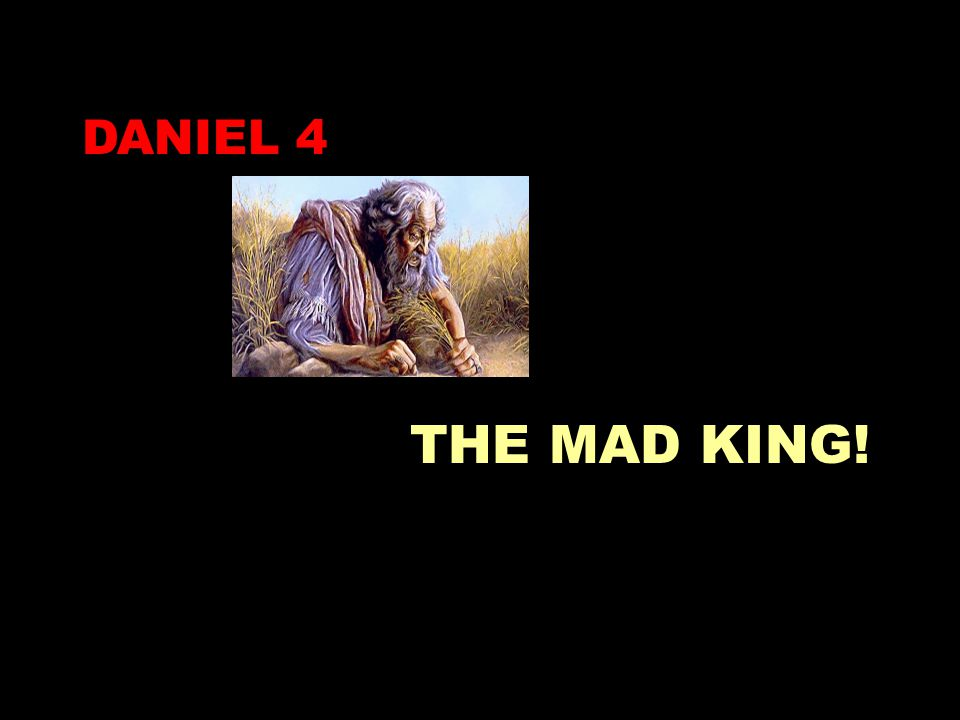 DANIEL 4 THE MAD KING!
