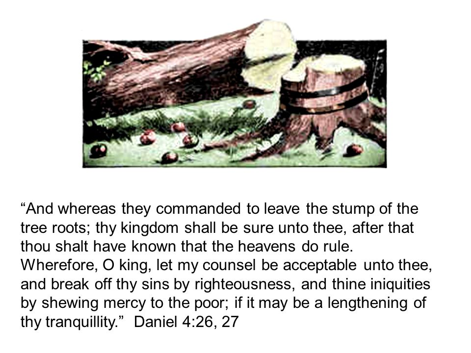 And whereas they commanded to leave the stump of the tree roots; thy kingdom shall be sure unto thee, after that thou shalt have known that the heavens do rule.