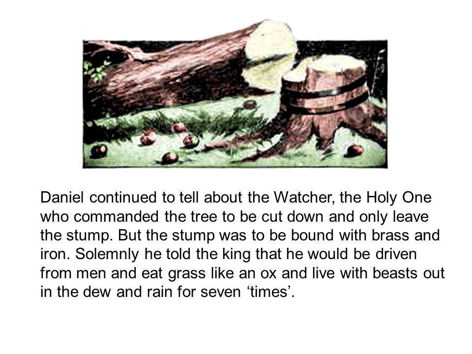 Daniel continued to tell about the Watcher, the Holy One who commanded the tree to be cut down and only leave the stump.
