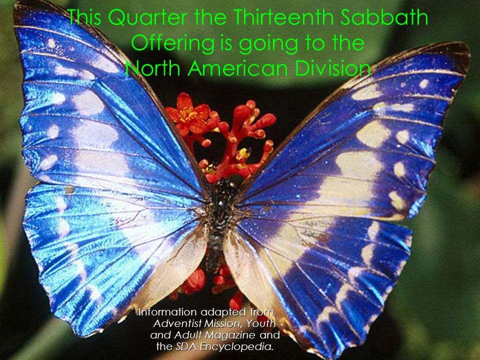 This Quarter the Thirteenth Sabbath Offering is going to the North American Division