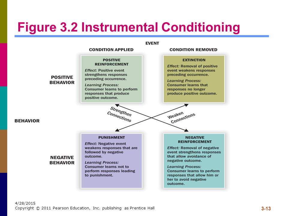 Figure 3.2 Instrumental Conditioning