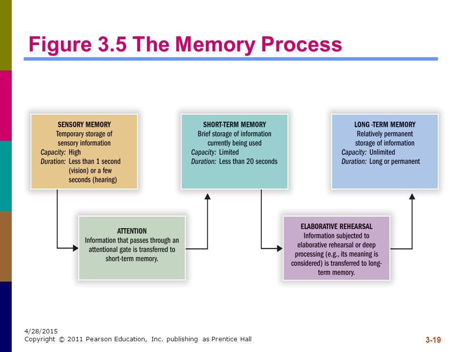 Figure 3.5 The Memory Process