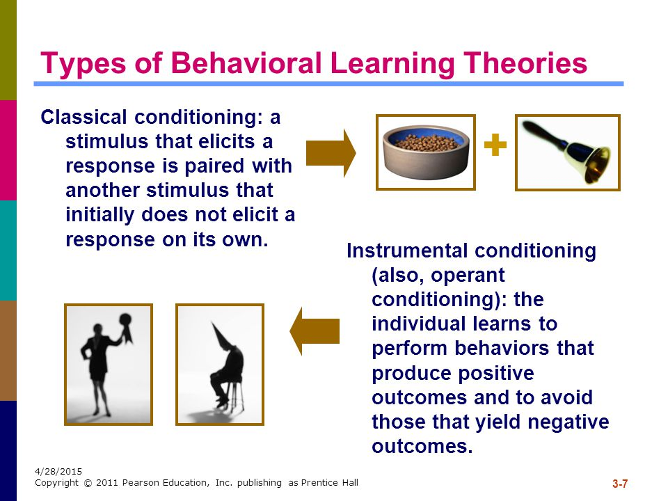 Types of Behavioral Learning Theories