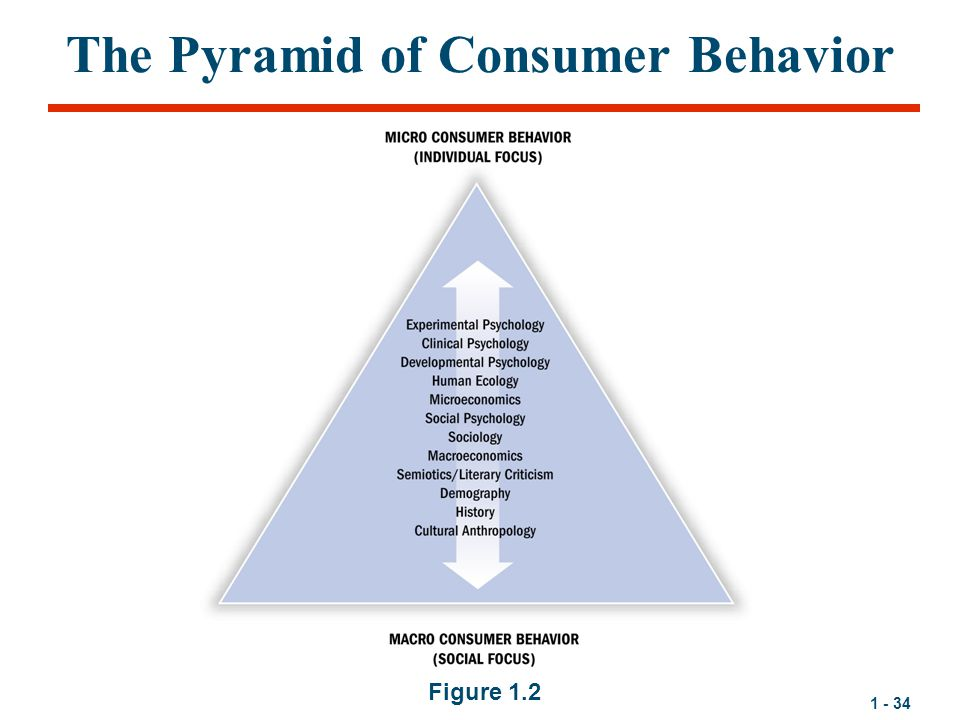 The Pyramid of Consumer Behavior