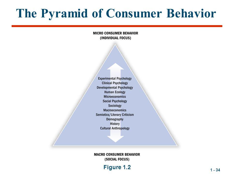 The Pyramid of Consumer Behavior