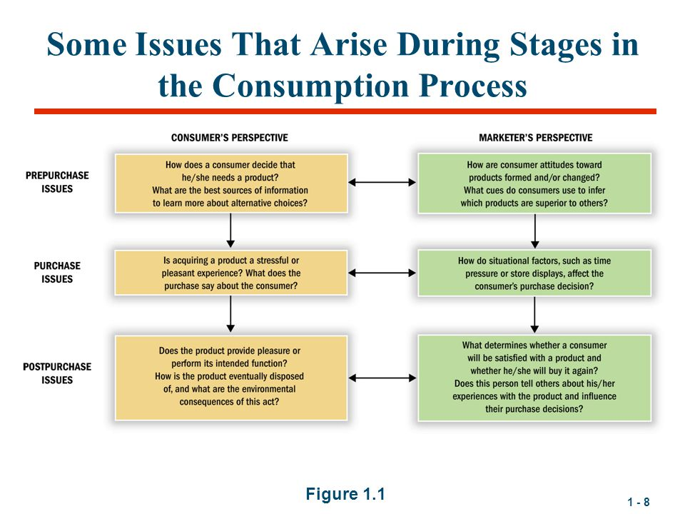 Some Issues That Arise During Stages in the Consumption Process
