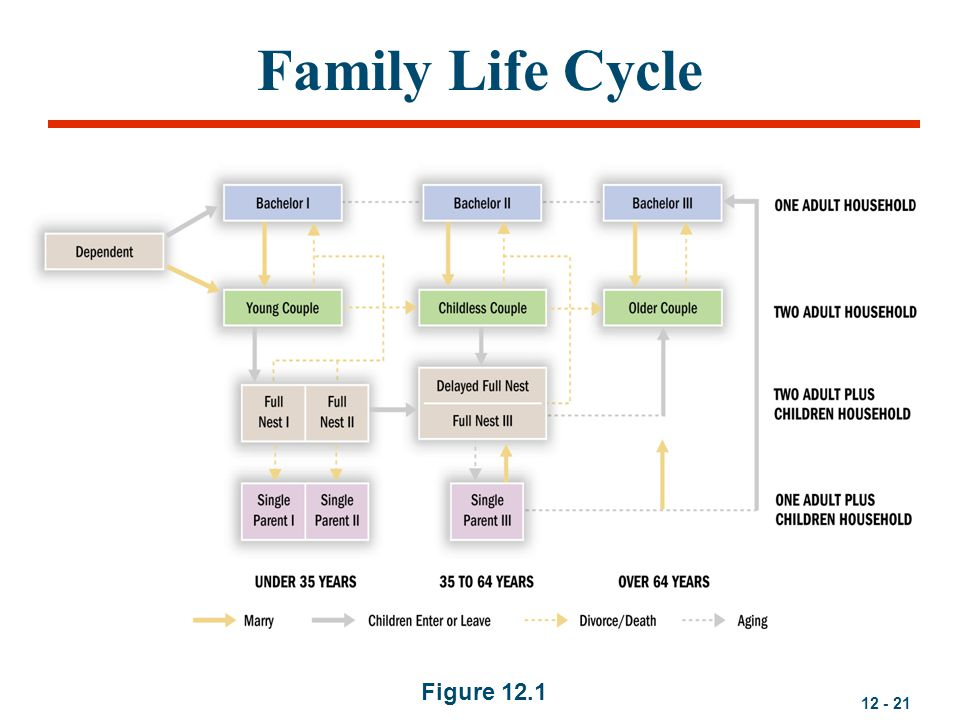 Family Life Cycle Figure 12.1