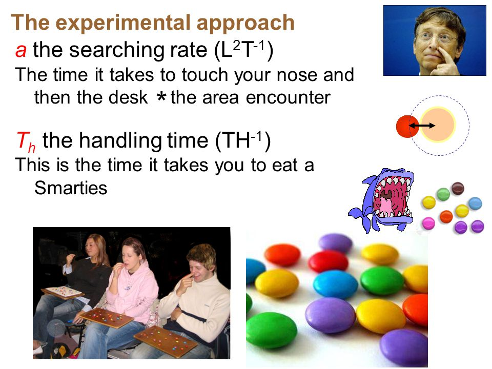 * The experimental approach a the searching rate (L2T-1)
