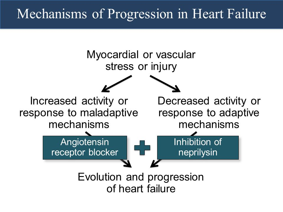 Mechanisms of Progression in Heart Failure