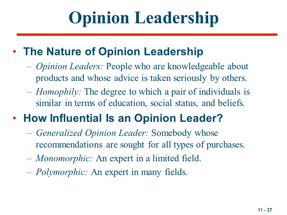 Opinion Leadership The Nature of Opinion Leadership