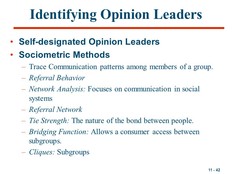 Identifying Opinion Leaders