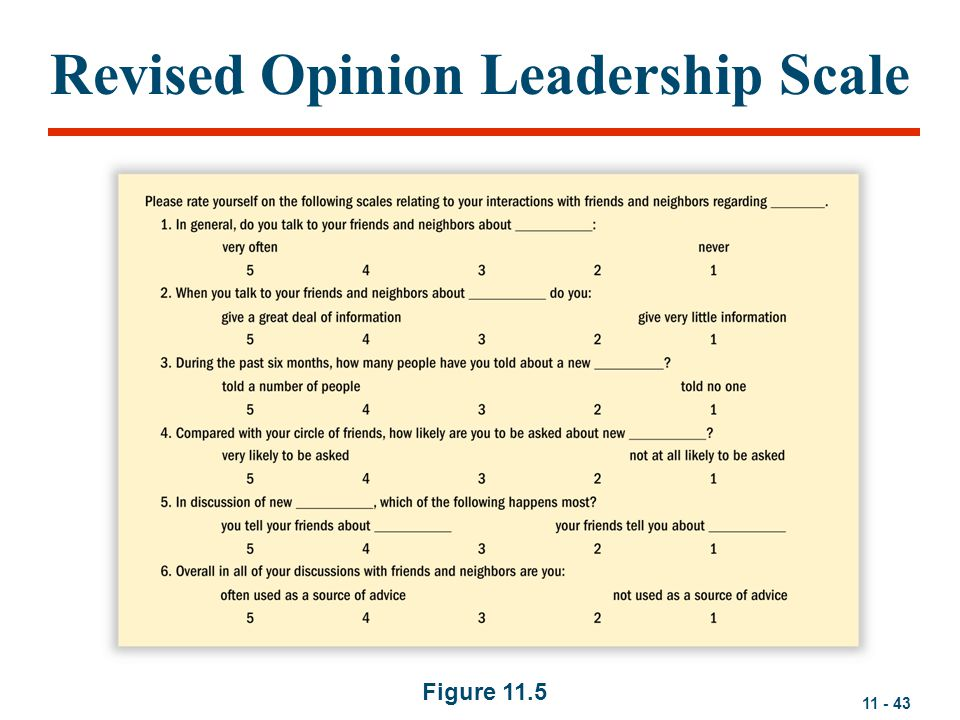 Revised Opinion Leadership Scale