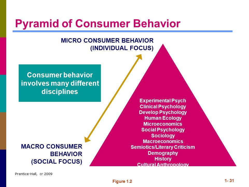 Pyramid of Consumer Behavior