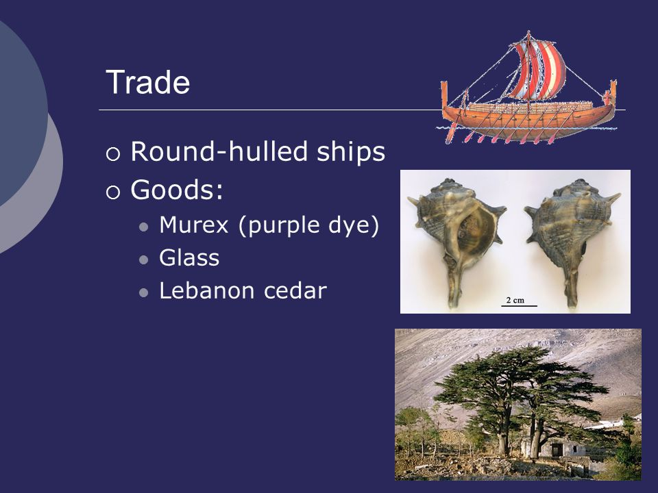 Trade Round-hulled ships Goods: Murex (purple dye) Glass Lebanon cedar