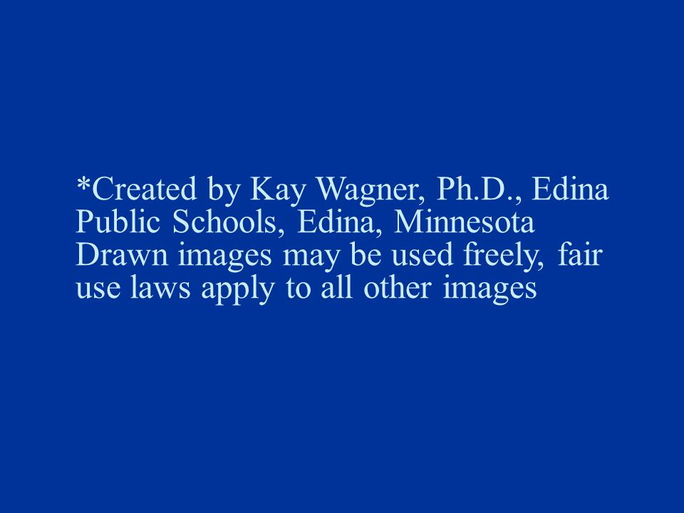 *Created by Kay Wagner, Ph.D., Edina Public Schools, Edina, Minnesota