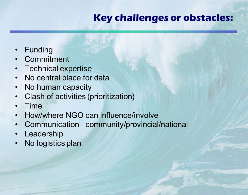 Key challenges or obstacles: