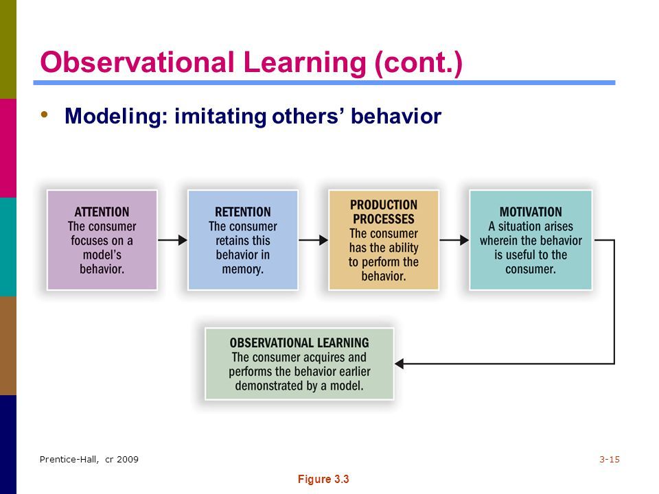 Observational Learning (cont.)