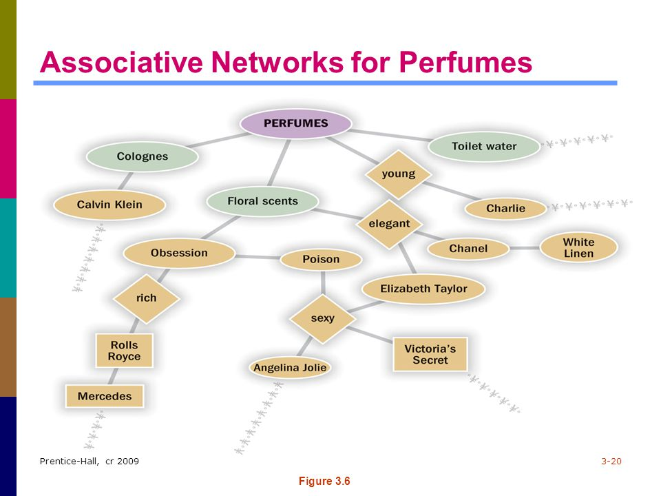 Associative Networks for Perfumes