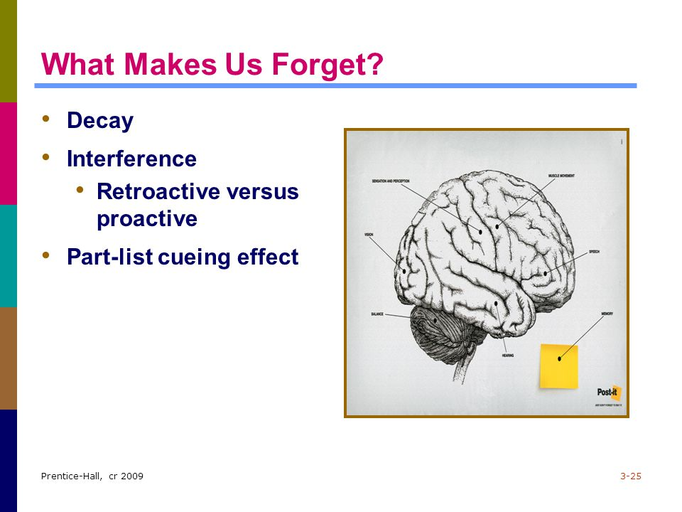 What Makes Us Forget Decay Interference Retroactive versus proactive
