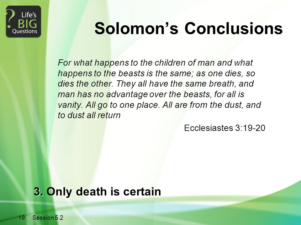 Solomon's Conclusions