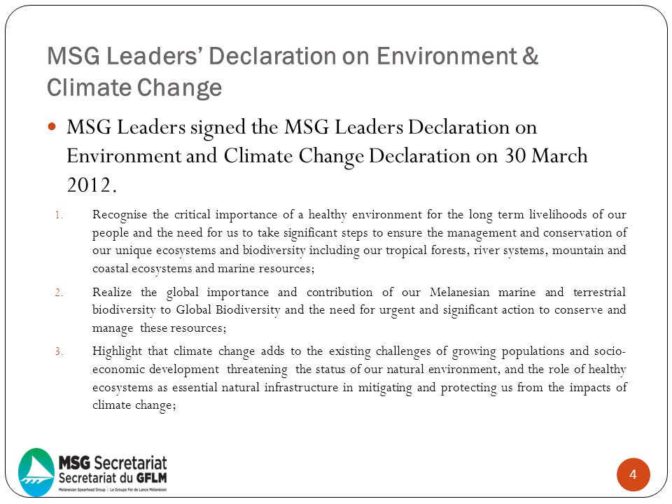 MSG Leaders' Declaration on Environment & Climate Change