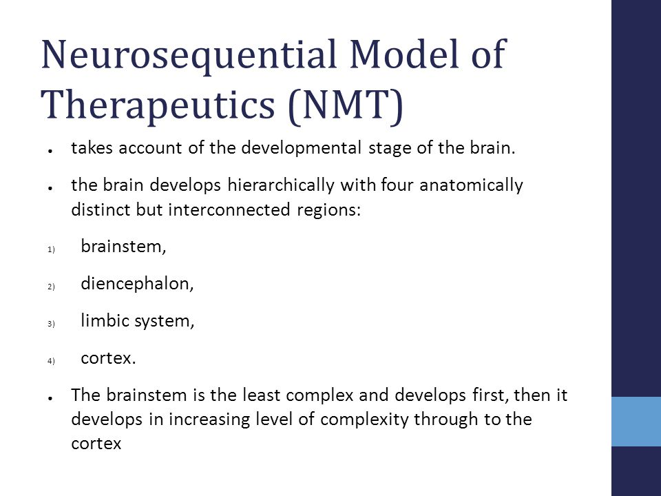 Neurosequential Model of Therapeutics (NMT)