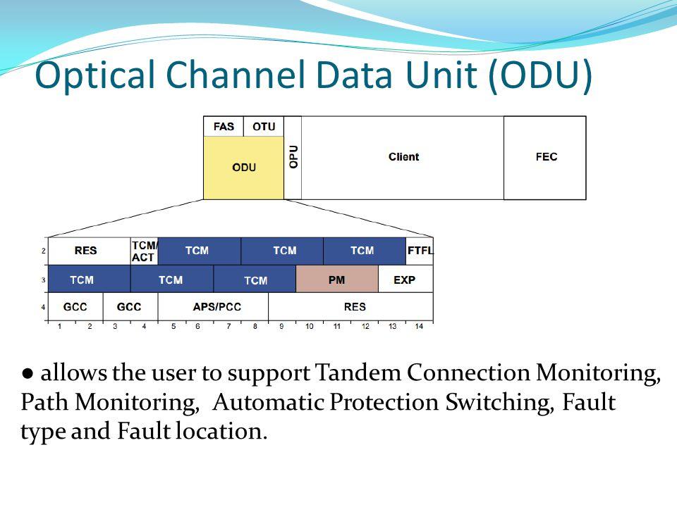 Optical Channel Data Unit (ODU)