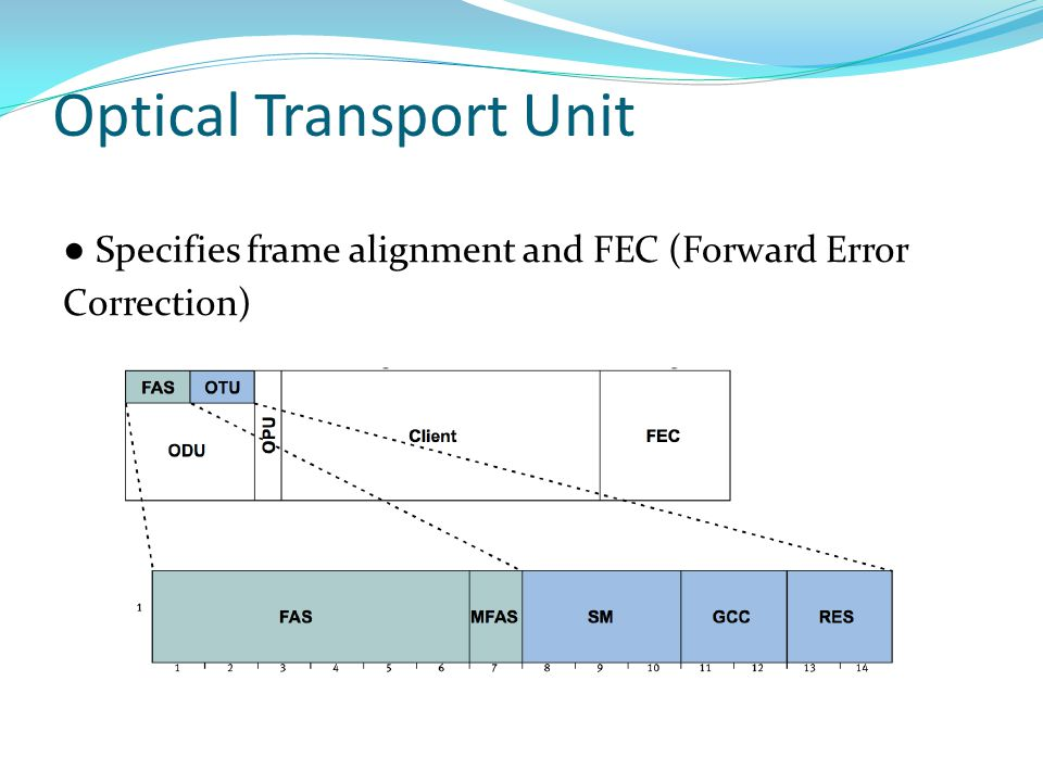Optical Transport Unit