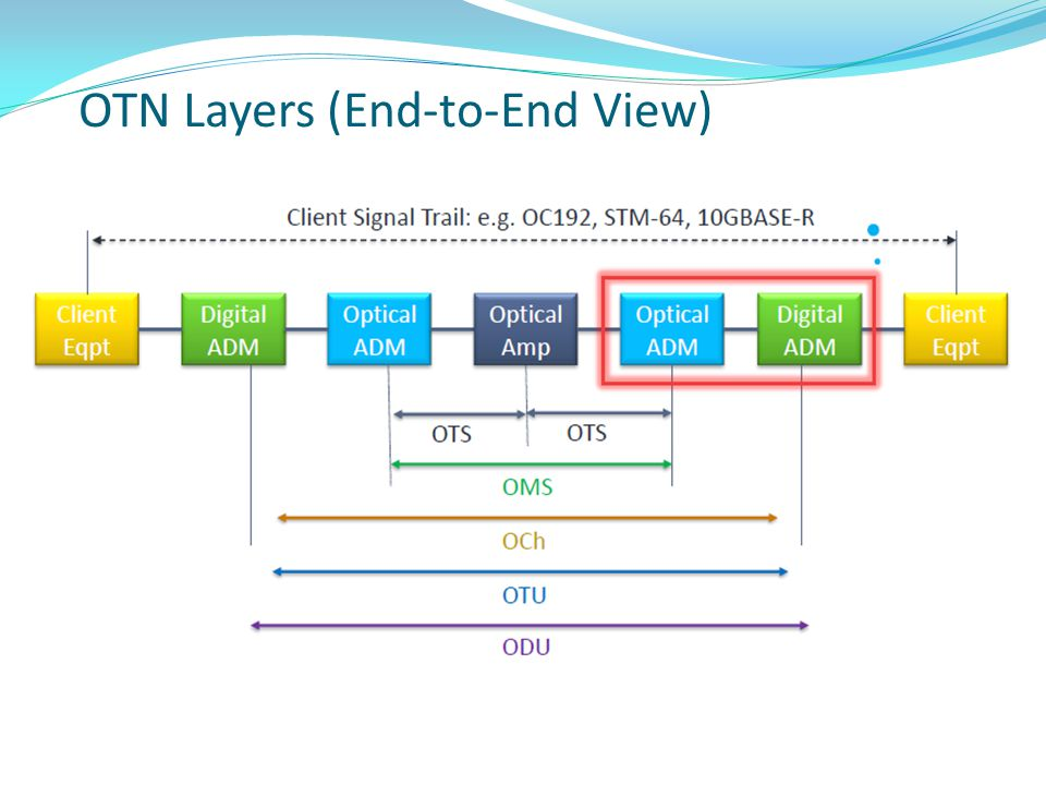 OTN Layers (End-to-End View)