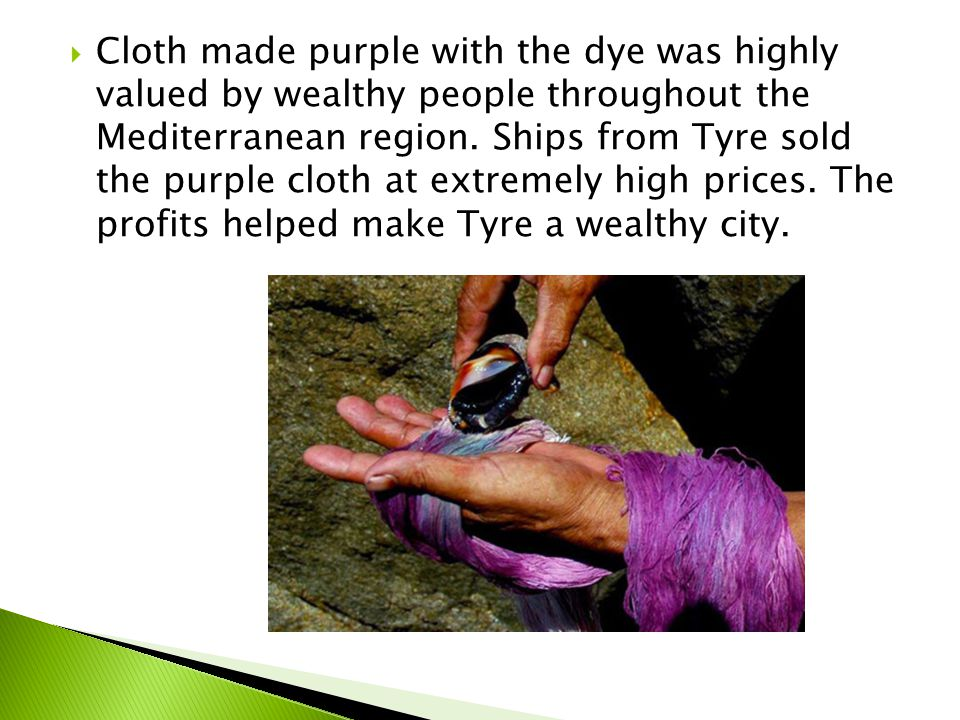 Cloth made purple with the dye was highly valued by wealthy people throughout the Mediterranean region.