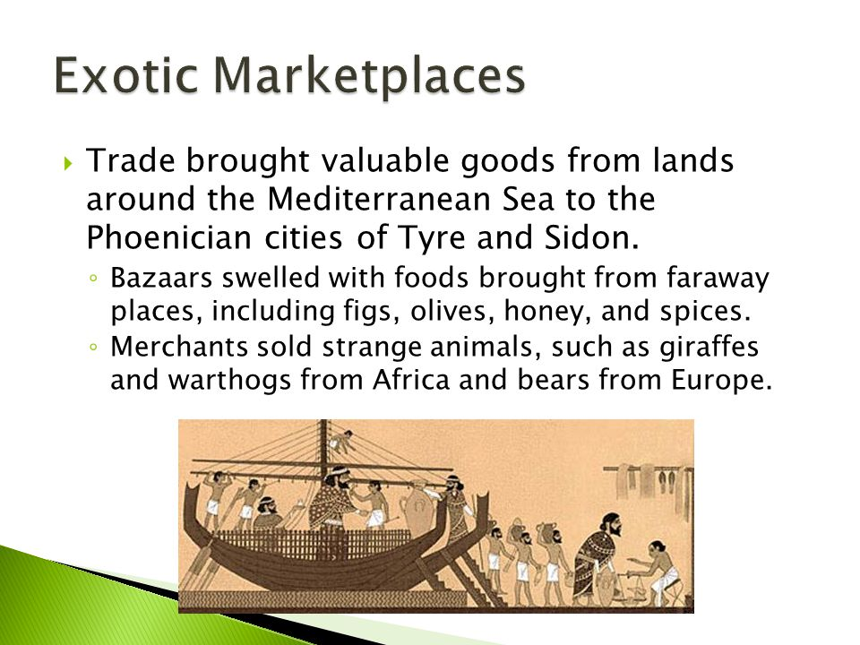 Exotic Marketplaces Trade brought valuable goods from lands around the Mediterranean Sea to the Phoenician cities of Tyre and Sidon.