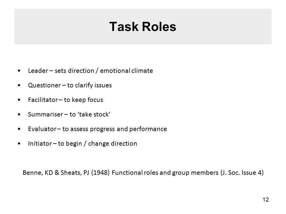 Task Roles Leader – sets direction / emotional climate