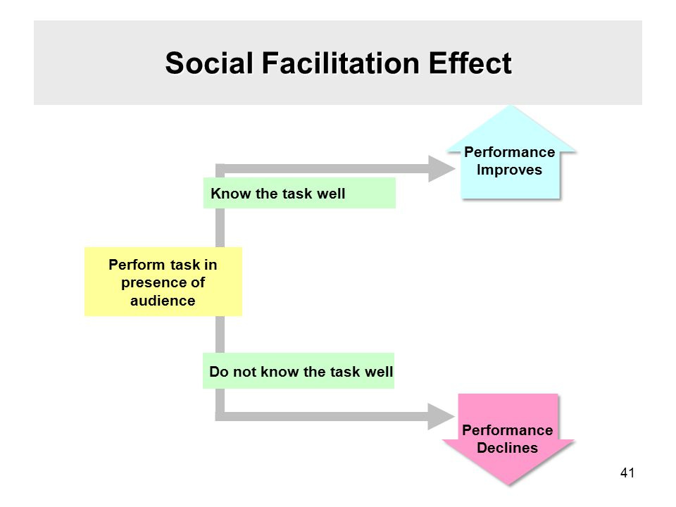Social Facilitation Effect