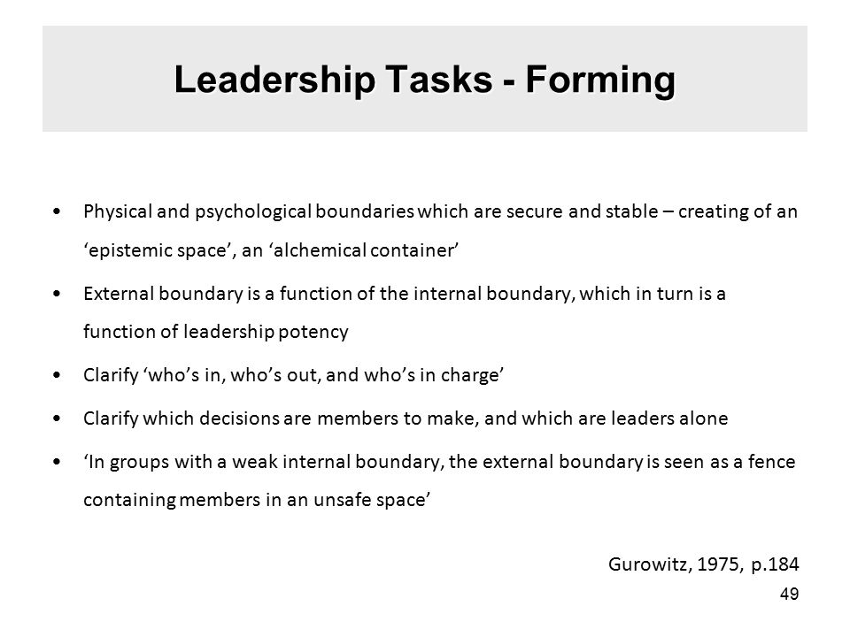 Leadership Tasks - Forming