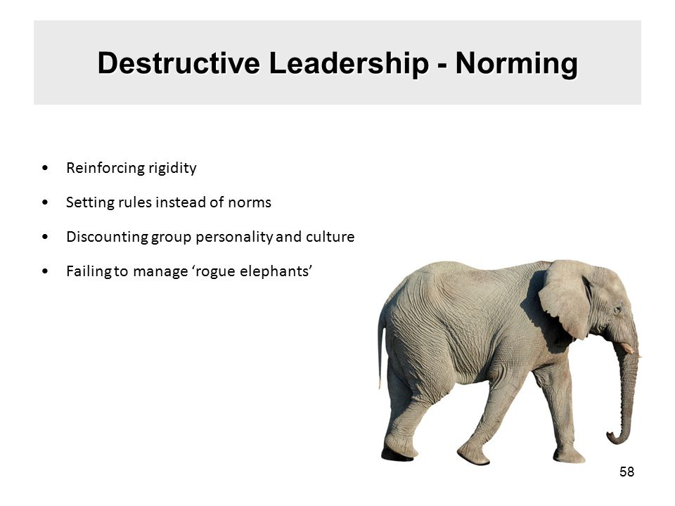 Destructive Leadership - Norming