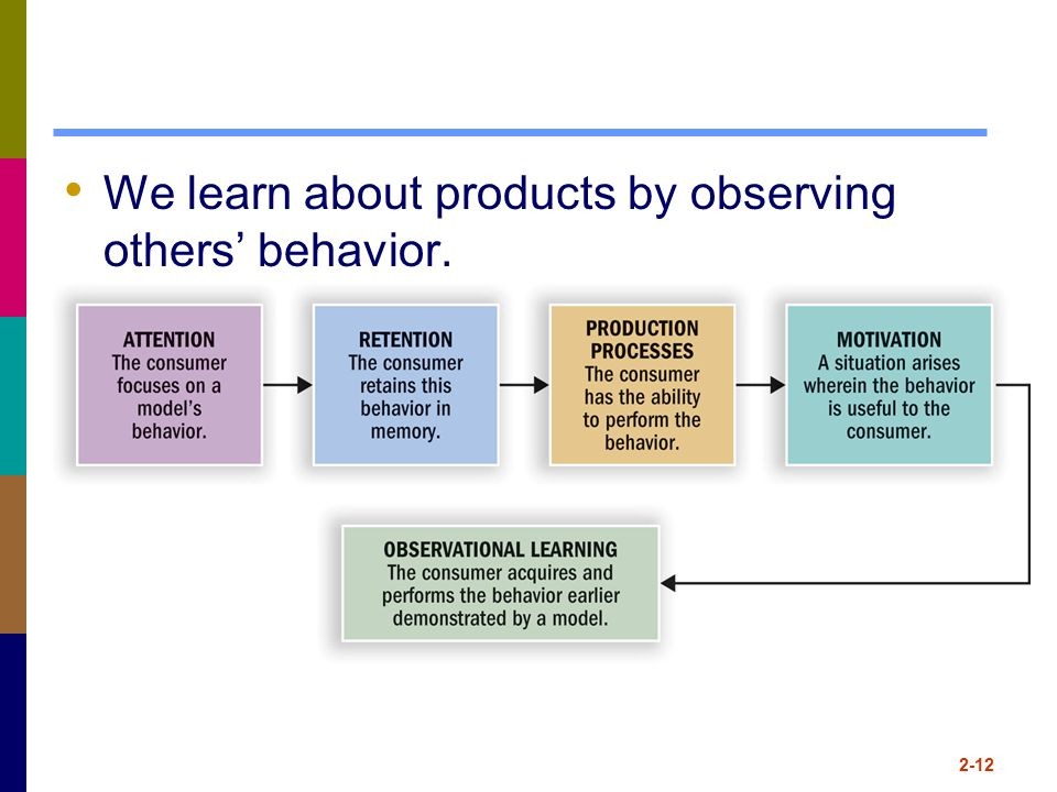 We learn about products by observing others' behavior.