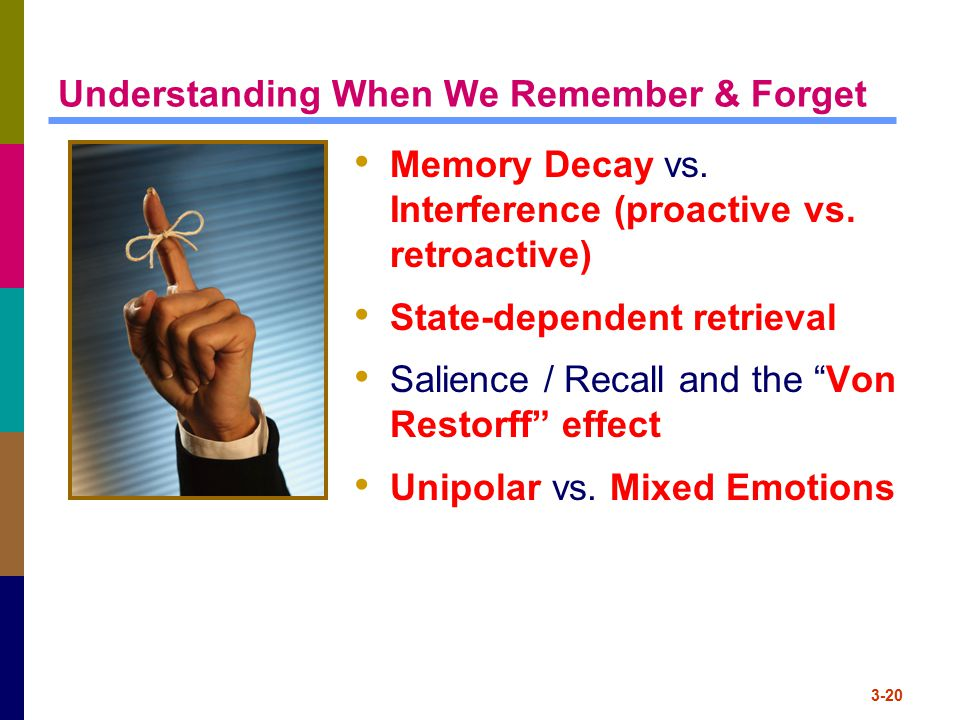 Understanding When We Remember & Forget