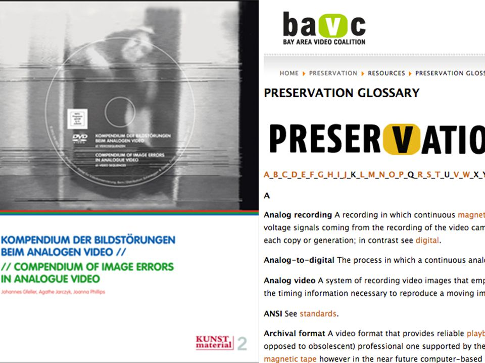 Last spring - One of my first steps was to review existing glossaries a recently released book compendium of image errors in analog video, the bavc glossary, and compare to the existing AVAA.