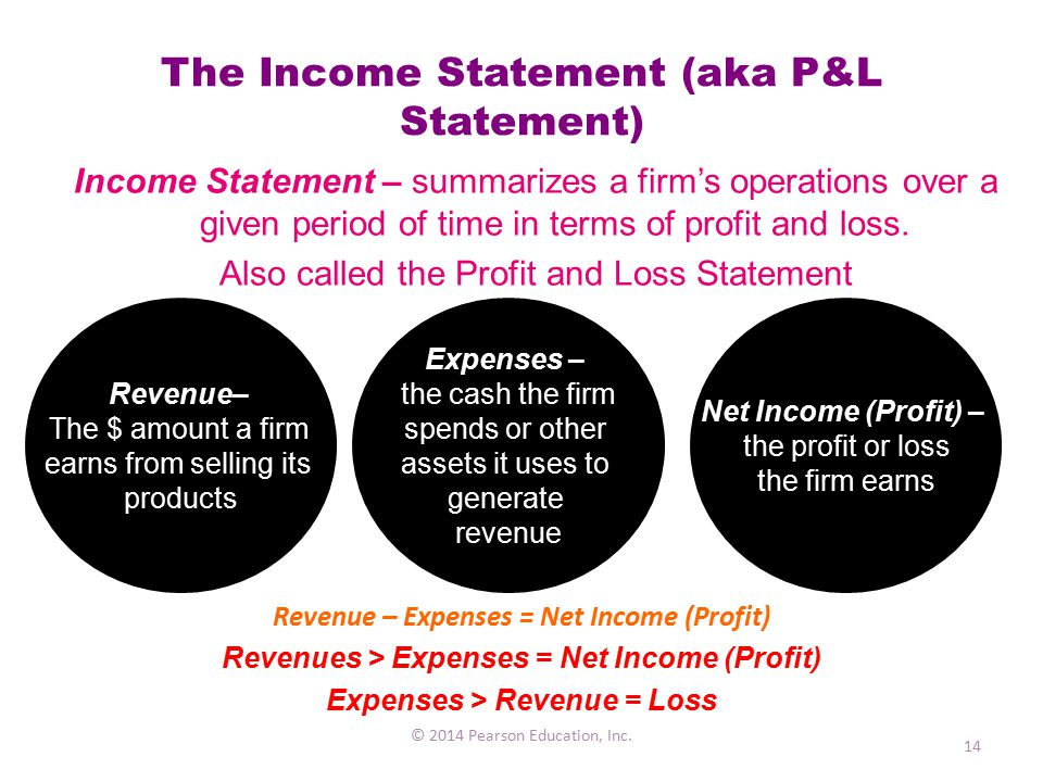 The Income Statement (aka P&L Statement)