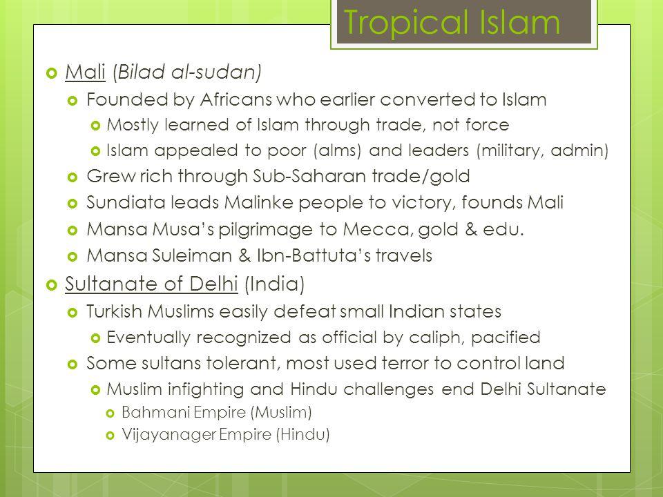 Tropical Islam Mali (Bilad al-sudan) Sultanate of Delhi (India)