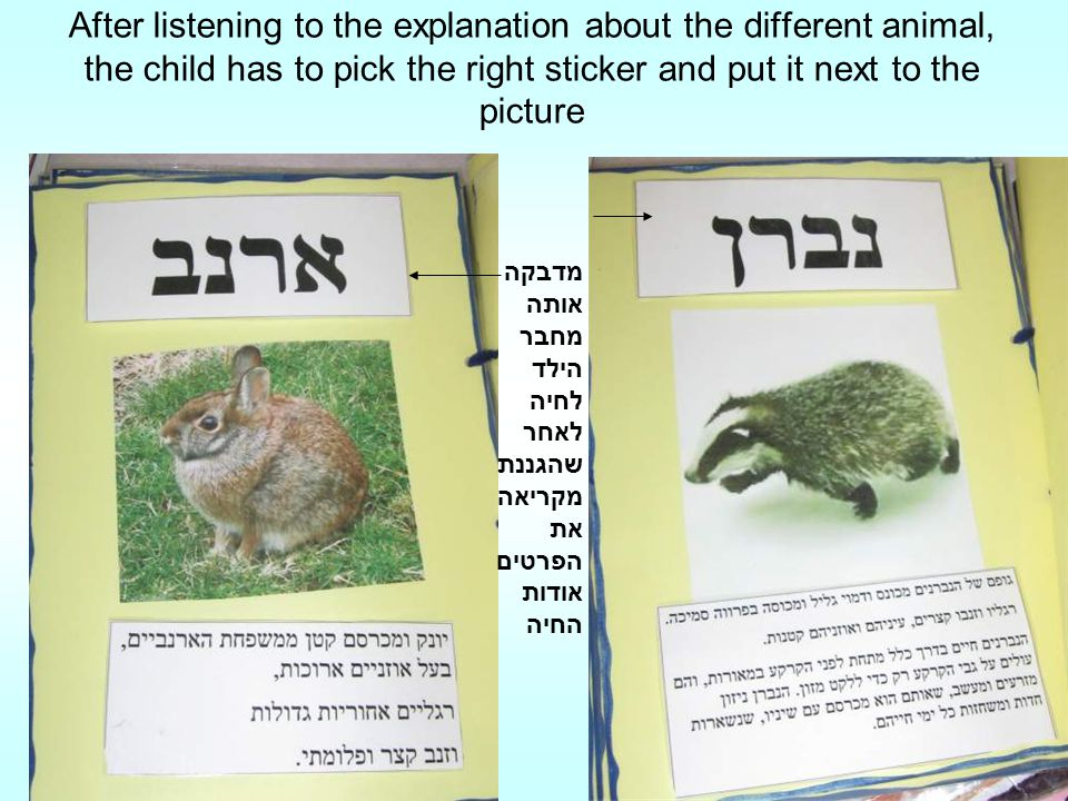 After listening to the explanation about the different animal, the child has to pick the right sticker and put it next to the picture