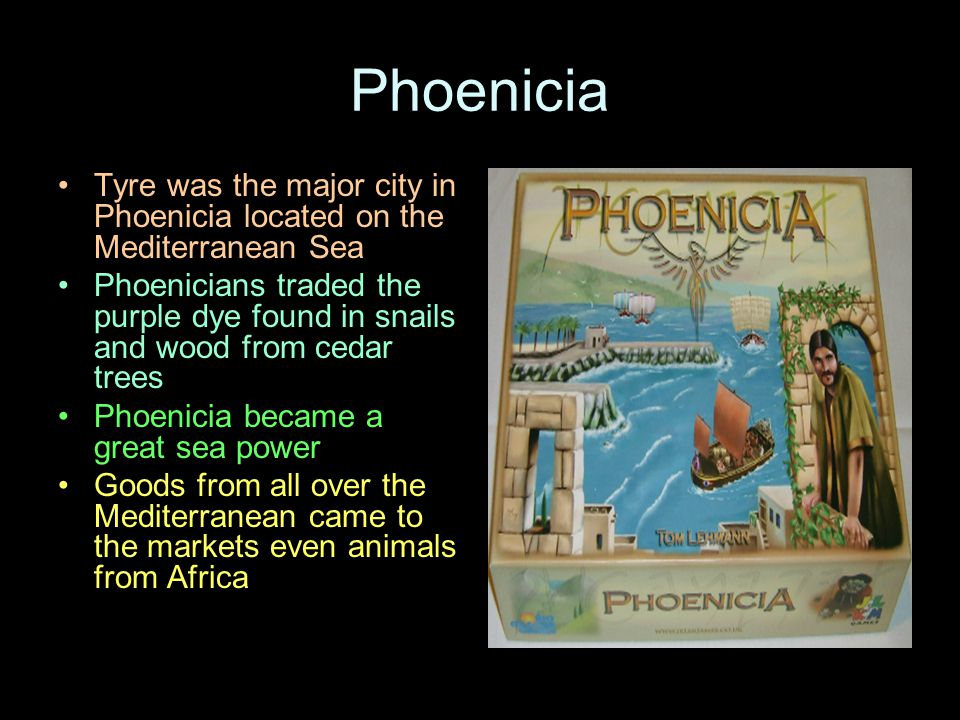 Phoenicia Tyre was the major city in Phoenicia located on the Mediterranean Sea.