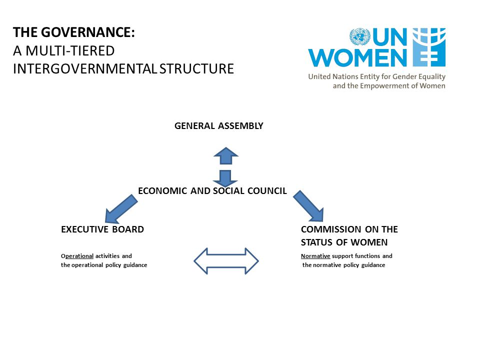 THE GOVERNANCE: A MULTI-TIERED INTERGOVERNMENTAL STRUCTURE
