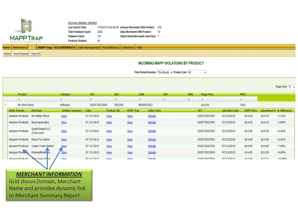 MERCHANT INFORMATION Grid shows Domain, Merchant Name and provides dynamic link to Merchant Summary Report.