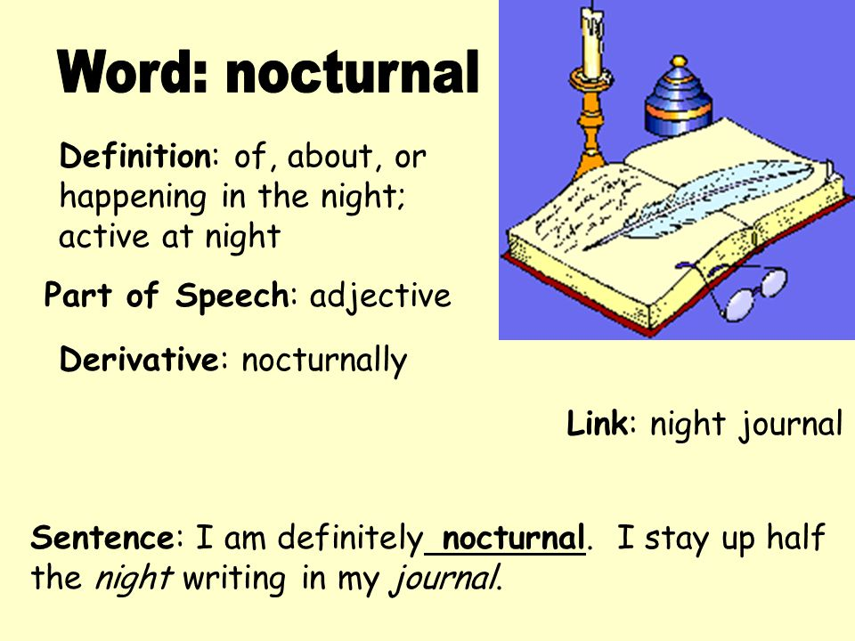 Word: nocturnal Definition: of, about, or happening in the night;