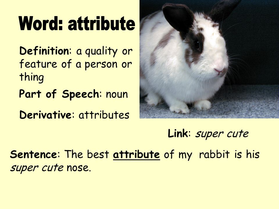 Word: attribute Definition: a quality or feature of a person or thing