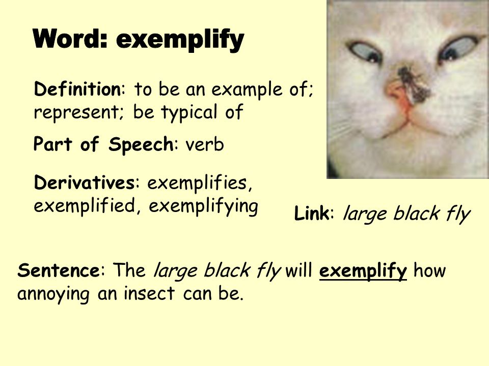 Word: exemplify Definition: to be an example of;