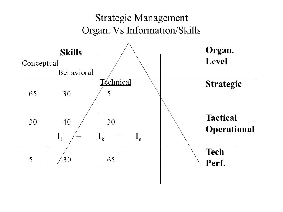 Strategic Management Organ. Vs Information/Skills