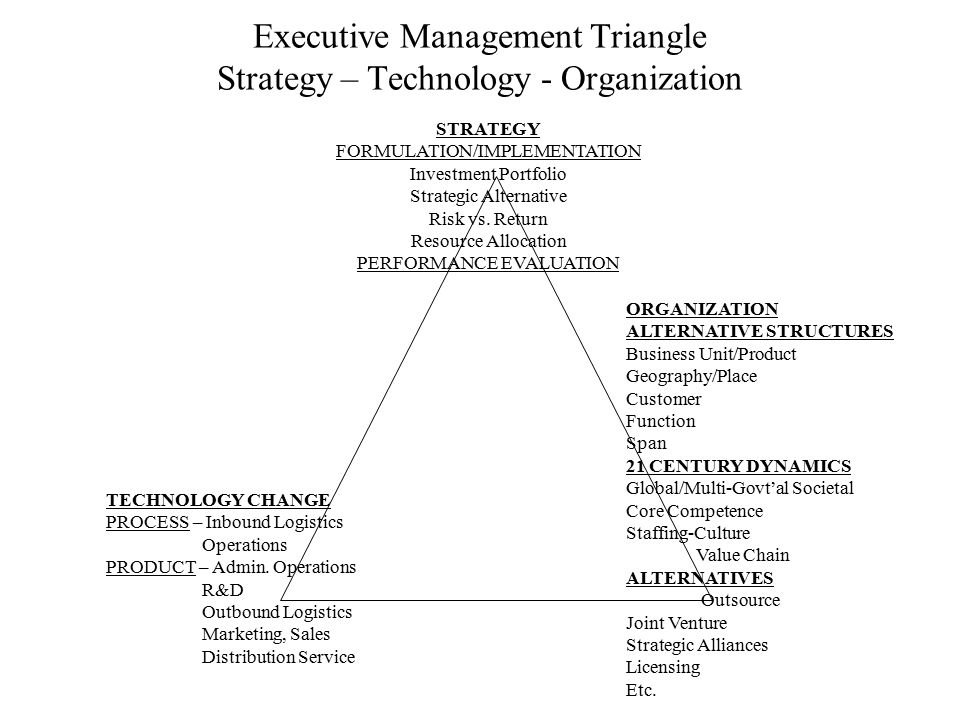 Executive Management Triangle Strategy – Technology - Organization