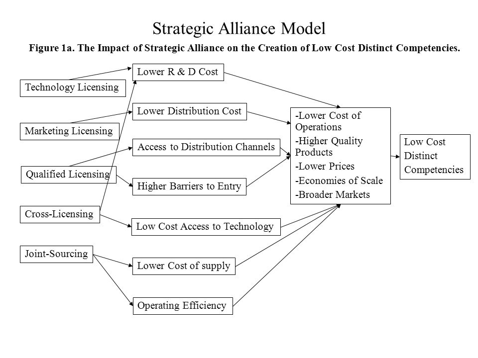 Strategic Alliance Model